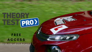THEORY TEST PRO POSTER
